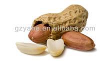 Peanut Oil Flaovr