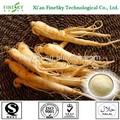 Chinois herb médecine ginseng ( panax ) extrait