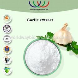 free sample HACCP KOSHER FDA China supplier HPLC 100% natural 2% 1% allicin garlic