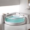 FC-253 FICO massage bathtub with tv bathtub price low
