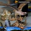 My Dino-resin statue eagle statue for home decoration