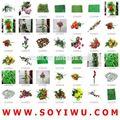 Instock regolarità& freesamples& tulipani in vaso di vetro da yiwu mercato per fiori artificiali e frutta