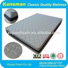 Soft and Comfort Compressed Memory Foam Dog Mattress