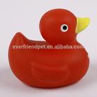 names of ducks,names for ducks
