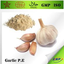 BNP Supply High Quality Garlic Extract (Allin & Allicin)