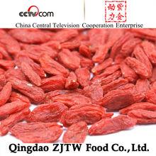 Chinese Goji Berries factory provider