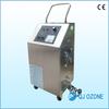 Portable ozone steam sauna, Ozone generator ceramic plate, mini ozone sterilizer