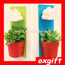 OXGIFT Promotion ! Rainy pot