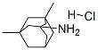 Clorhidrato de memantina/memantina hcl