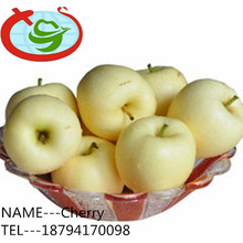Fresh Golden Crisp Apples