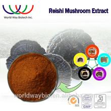 Herb medicine ingredient Ganoderma lucidum extract,100% pure natural top quality duanwood reishi mushroom extract powder