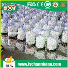 [HOT]2014 China natural fresh Garlic for wholesale/lowest price fresh white garlic