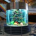 redonda grande aquário acrílico