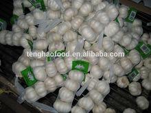 2014 new crop ,250g/bag ,fresh white garlic