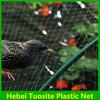 HDPE anti bird net for fruit protection,bird net for catching birds