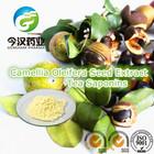 China Manufacuturer Camellia Oleifera Seed Extract Tea Saponin