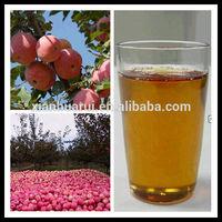 Pure Natural Halal Certificate Brix 70% Apple juice concentrate