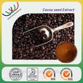 échantillon gratuit de qualité supérieure 10% théobromine graines de coca pour la vente en chine