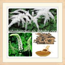 high quality black cohosh p.e/black cohosh p.e powder/black cohosh extract