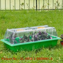 plant nurseries propagation tray