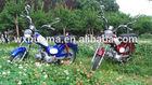 high quality Chinese cheap 50cc 110cc delta cub chopper motorcycle