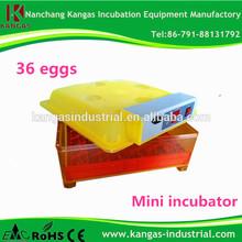Economic and practical hatchability above 96% egg Incubator in dubai