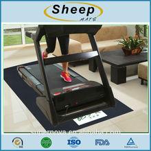 Fitness mat / Floor Mat / PVC Mat