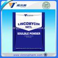 lincomicina gmp animal medicina veterinária fabricante da droga