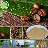pure green coffee bean extract/Chlorogenic acid 50%