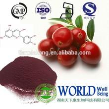 100% natural cranberry powder extract powder,natural cranberry anthocyanidin extract, 50:1 cranberry extract powder