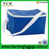 2014 popular promotional picnic cooler bag with cheaper price