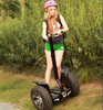 Hot selling 2 wheel electric auto rickshaw price in india