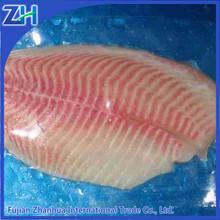 tilapia fillet frozen fish in market