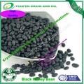 Chine origine haricot noir 500-550 pcs/100g
