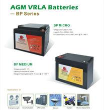 CE approval Sealed lead acid 12v 24ah battery for UPS/inverter