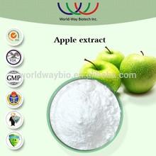 free sample apple polyhphenol,HACCP KOSHER FDA apple extract,China manufacturer plant extract 80% apple polyphenol