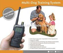 in ground dog training fence dog wireless fence