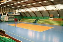 Enlio/Indoor Sports Floor/Volleyball Synthetic Surface/Mat