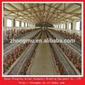 Automática de la batería de aves de corral sistema de cage/precio barato de aves de corral jaulas en batería para granjas de nigeria