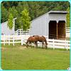 hot-dip galvanized powder coated horse pasture aluminum tube fence for wholesaler