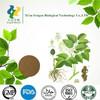 Best selling natural angelica extract powder & Ligustilide 1%