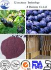 100% manufacturer import acai pills / acai berry juice/acai berry dried powder 10:1