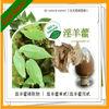 plant herb Epimedium Extract powder icariin 50% 60% 80% 98%