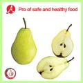 De alta calidad de pera en conserva en( luz) jarabe por pro de alimentos seguros y sanos