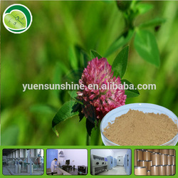 Organic Red Clover Extract /Isoflavone 8%-40%