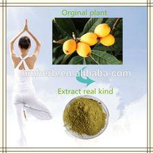 Corosolic acid loquat extract natural loquat leaf P.E.