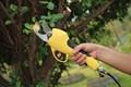 Koham efficace jardin. Échenilloir Élagage outils kh- st- 2( fccmarque, certificat de la ce)