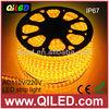 220v 60pcs 3528 120V Flexible Dimmable 100m/roll LED Strip Light