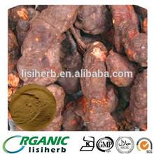 Polygonum Multiflorum Thunb / HE SHOU WU In Herbal Extract