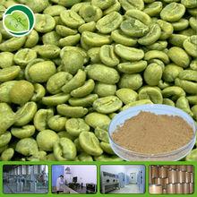 pure green coffee bean extract powder/Chlorogenic acid/ green coffee bean p.e.